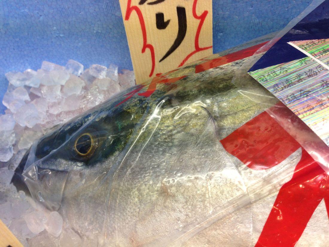 atunafish
